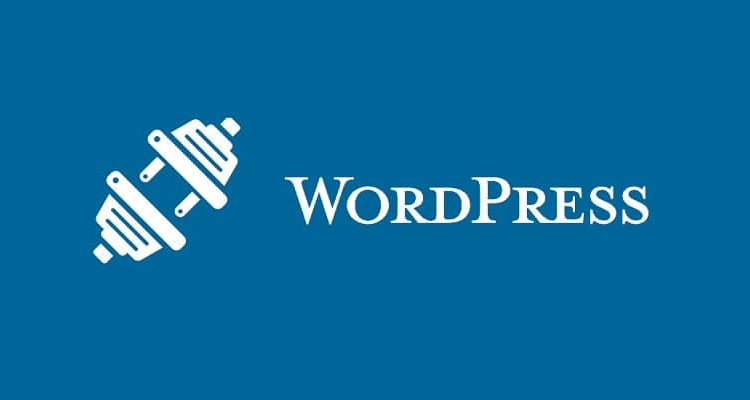 What are Plugins in WordPress