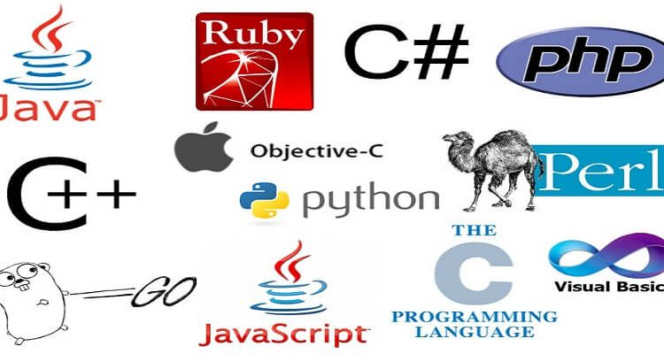 The 10 Best Programming Languages
