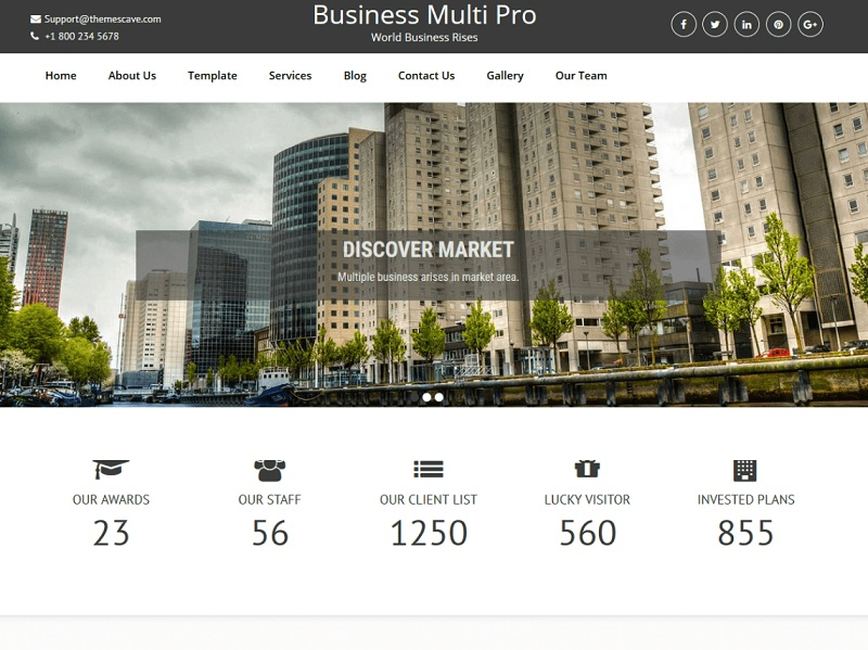Business Multi Lite
