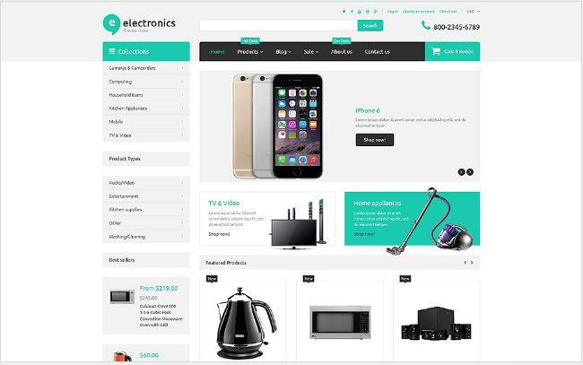 electronics retailer