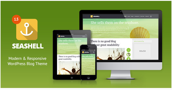 sea shell Best Responsive WordPress Affiliate and Coupon Themes