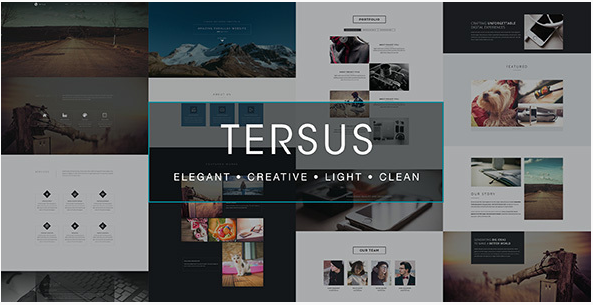 tersus Most Popular Muse Templates wpshopmart