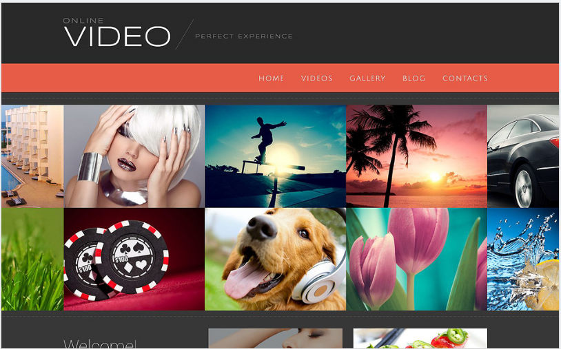 video blog x