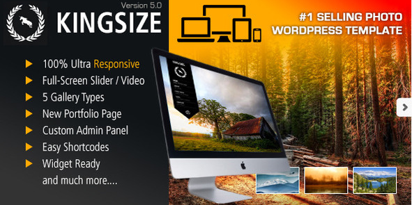 KingSize Fullscreen Photography Theme WordPress Photography Themeswpshopmart