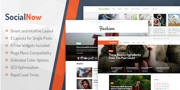 SocialNow Best WordPress Personal Blog Themes