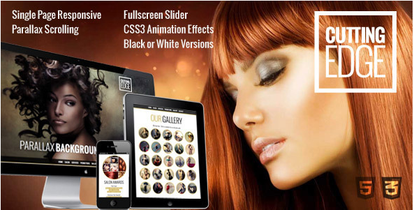 cutting edge Best WordPress Spa and Hair Saloon Themes