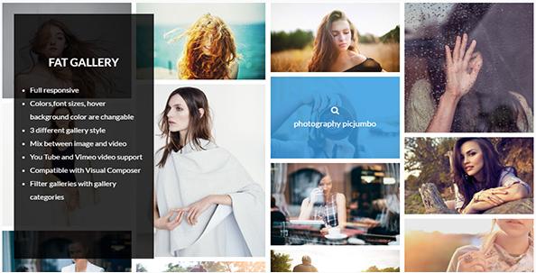 fat Best Premium WordPress Gallery Plugins wpshopmart
