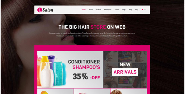 salon Best WordPress Spa and Hair Saloon Themes