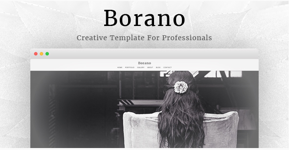Borano - Photography  Portfolio Template