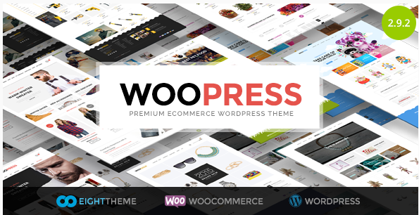 41+ Best eCommerce Wordpress Themes 2016