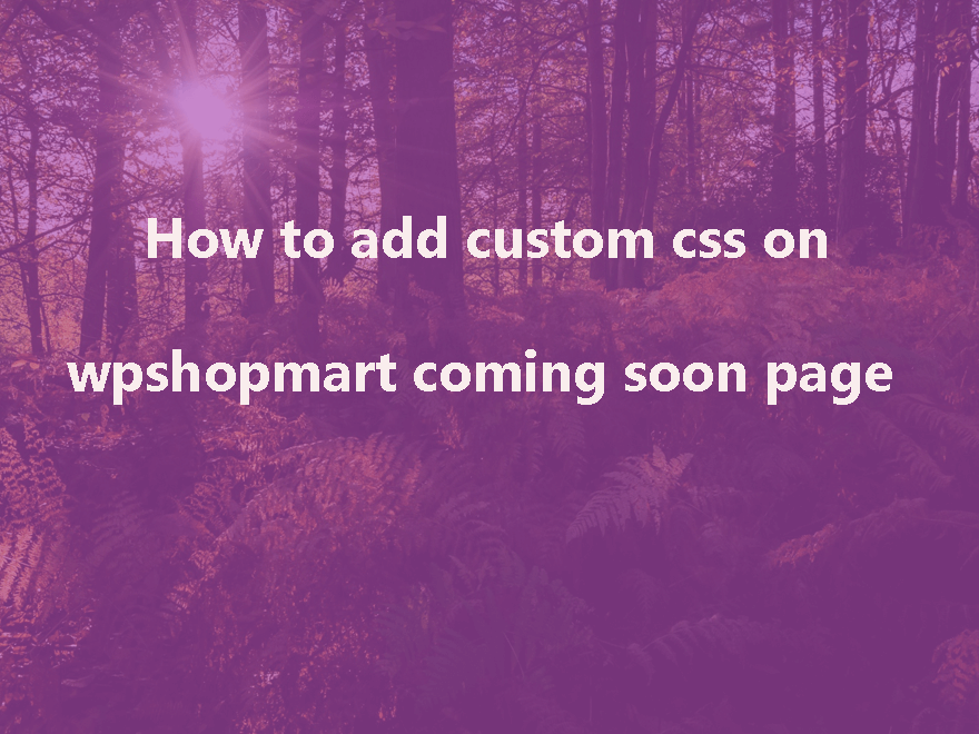 How To add custom css in wpshopmart coming soon pro plugin