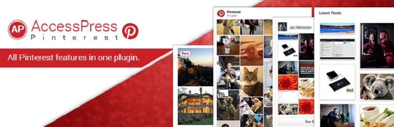 AccessPress Pinterest