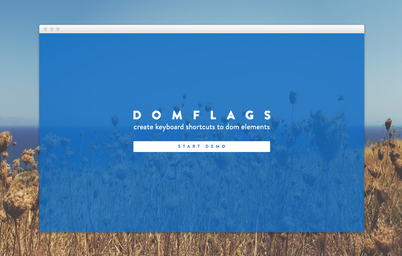 DomFlags