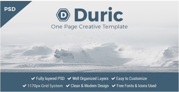 Duric - One Page PSD Template