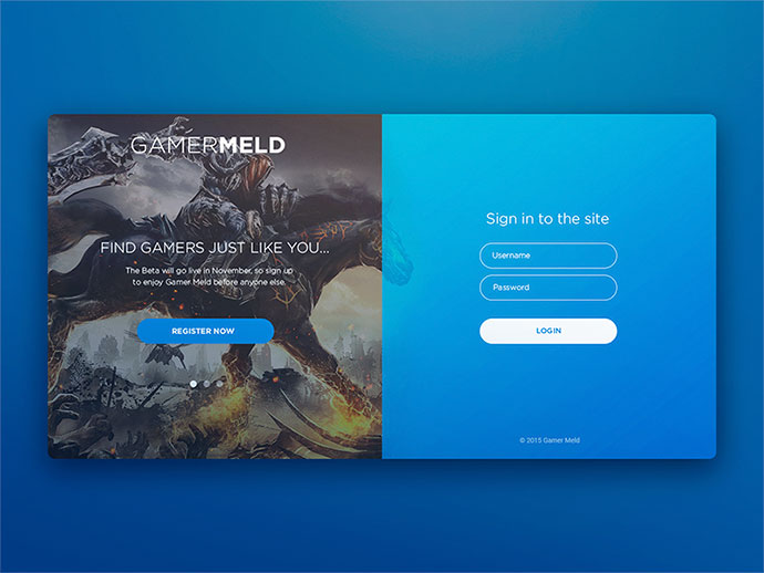 Web Form Designs