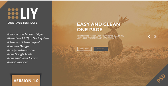 LIY - One Page PSD Template