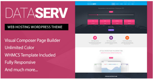 dataserv Best WordPress Technology Themes