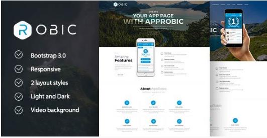 robic Best WordPress Technology Themes