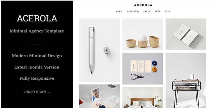 Acerola - Ultra Minimalist Agency, Portfolio & Photography Joomla Template