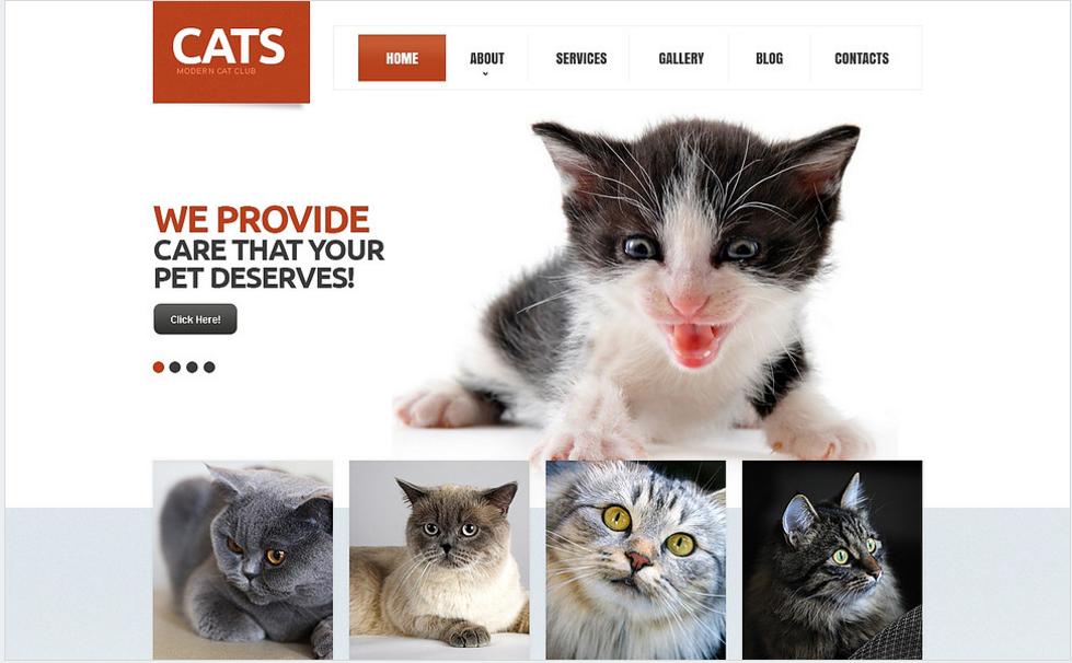 Cat Responsive Drupal Template