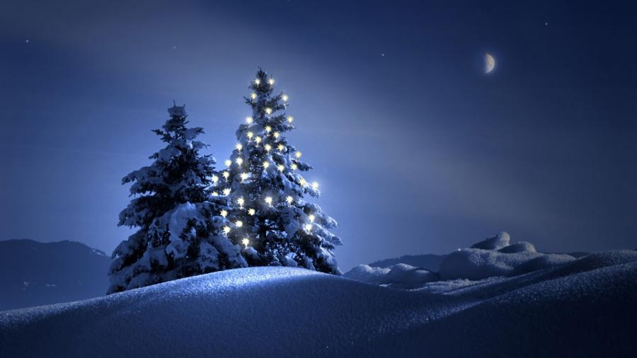 Christmas-Winter-Tree