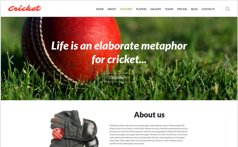 Cricket Club Joomla Template