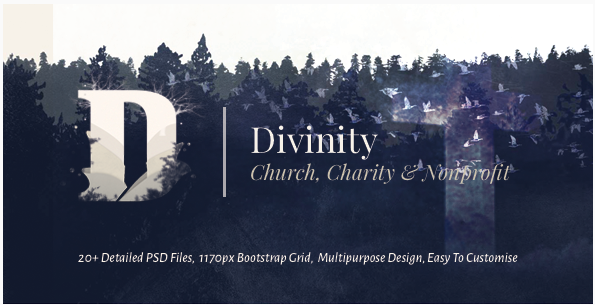 Divinity - Unique Church, Nonprofit & Charity Template PSD