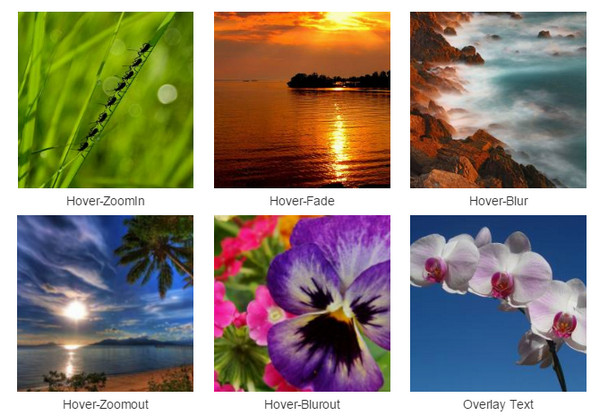 Hover Effect CSS3 for Bootstrap Gallery