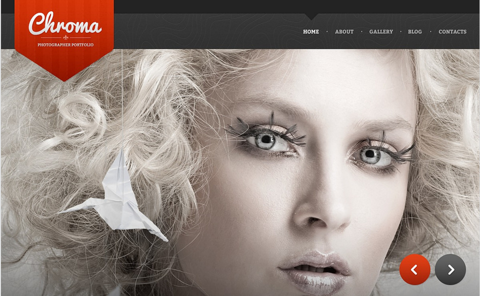 Photographer Page Drupal Template