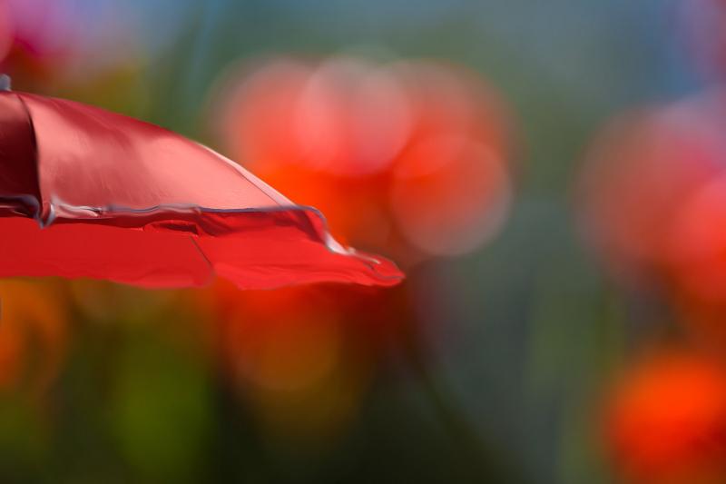 Photography-Bokeh-Texture-
