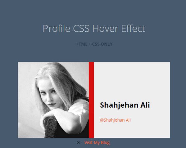 Profile CSS3 Hover Effect