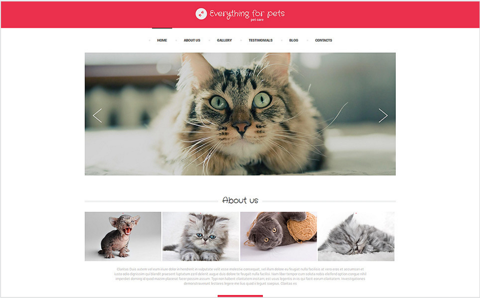Vet Consulting Drupal Template
