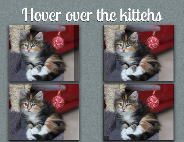 hover-over-the-kitches