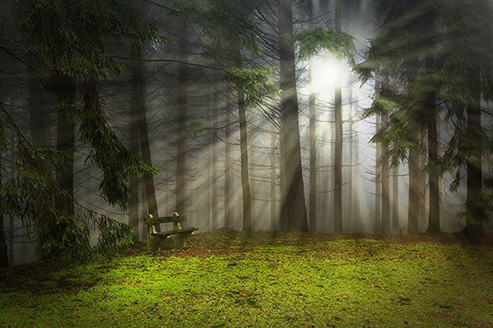 light-rays