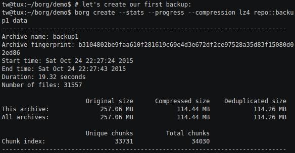 linux-backup-software-borg