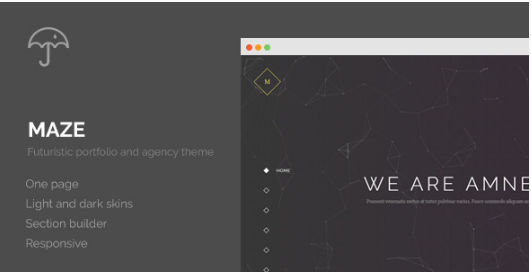 maze WordPress Themes For Designers