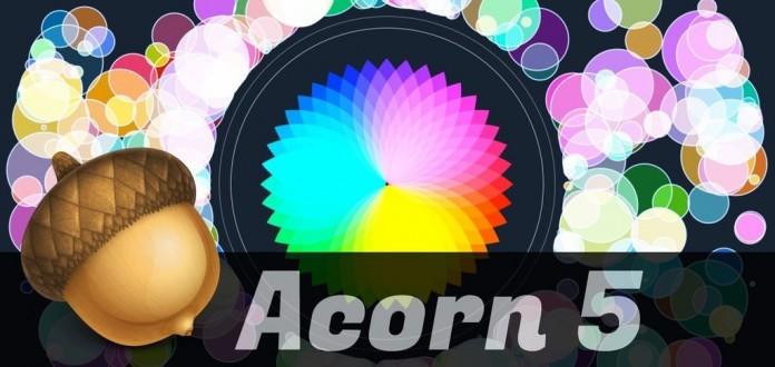 Acorn-5-696x330