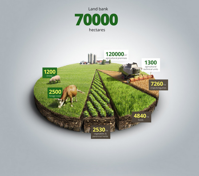 Agricultural-infographics