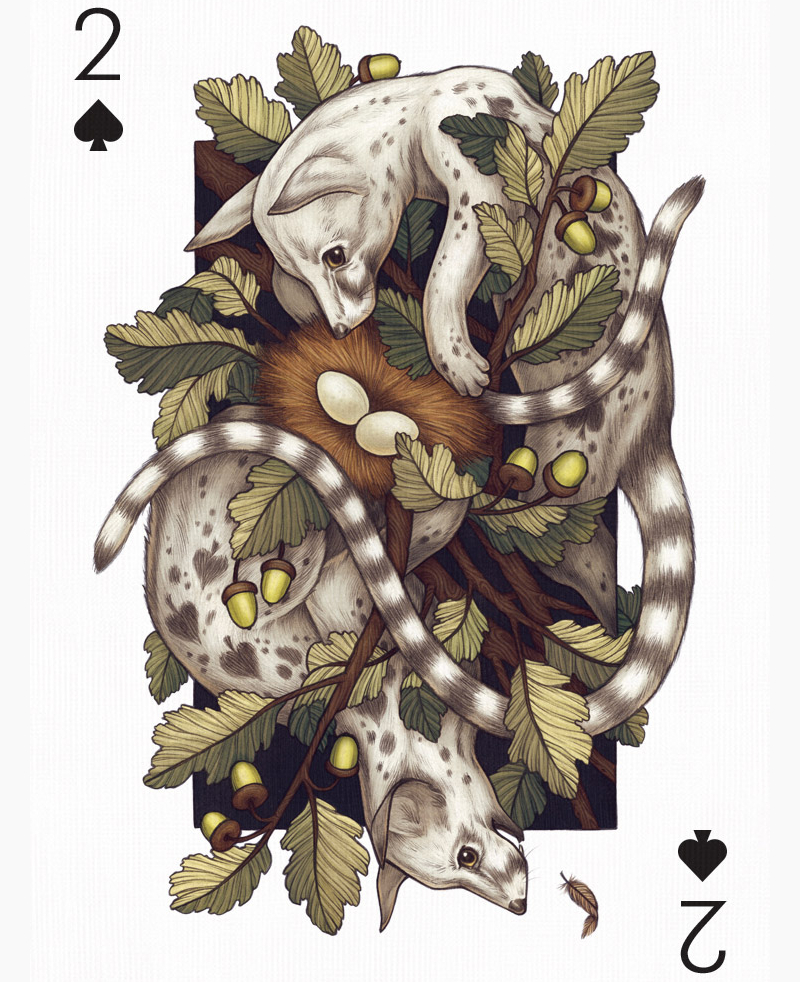 Animals-Playing-Card-Design