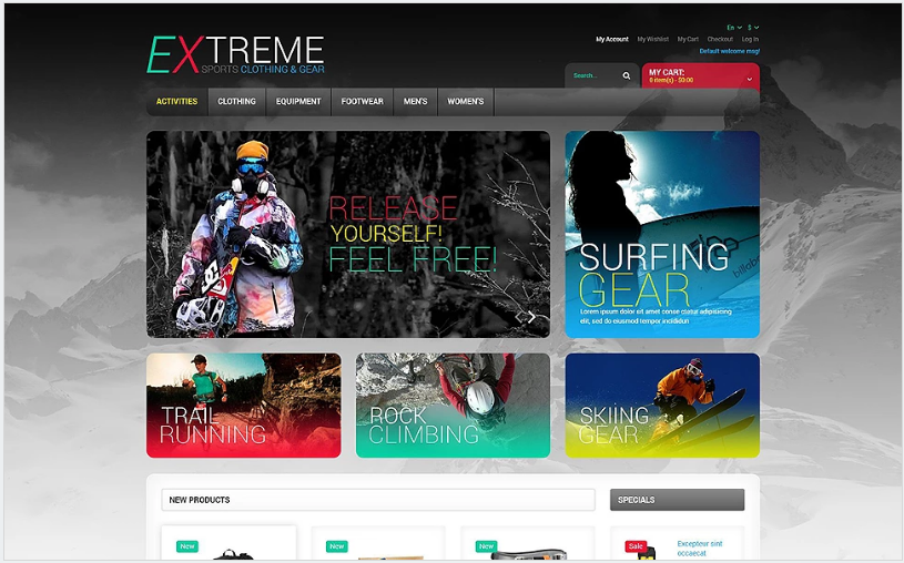 Effective Online Store Magento Theme