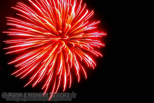 Amazing FireWork Photography Examples