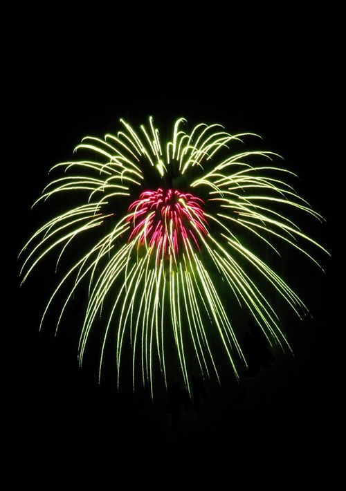 Fireworks_Flower_by_AcceptedOutcast