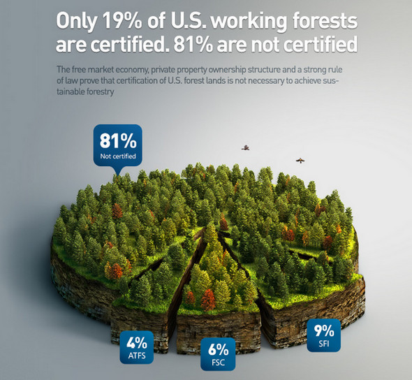 Forest-infographics