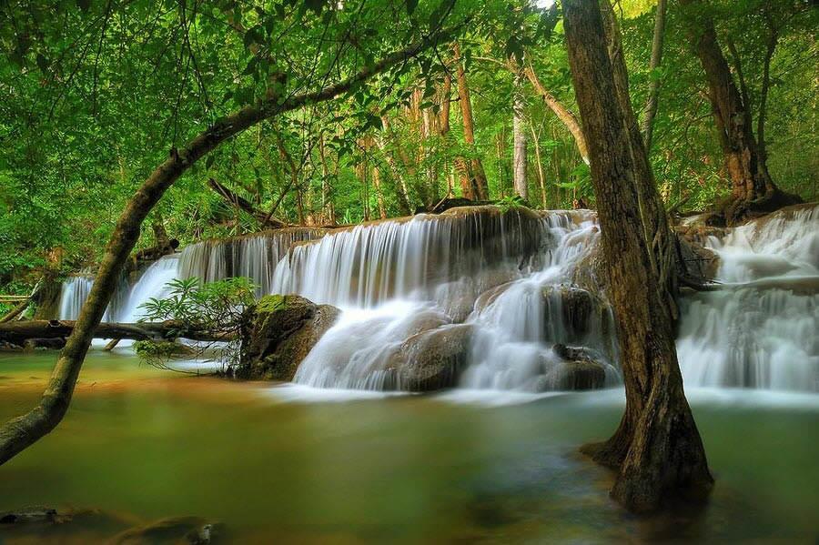 Green Water Fall Wallpaper