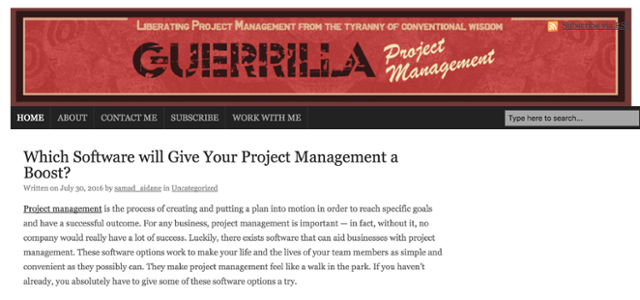 Guerilla_Project_Management