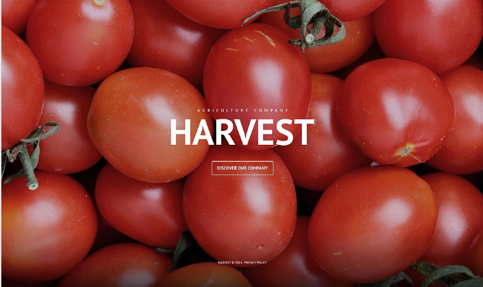 Harvest PSD Template
