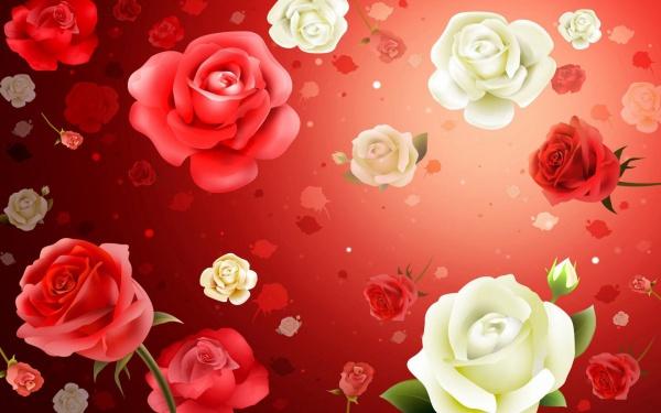 Rose-Flower-Background-on-Window