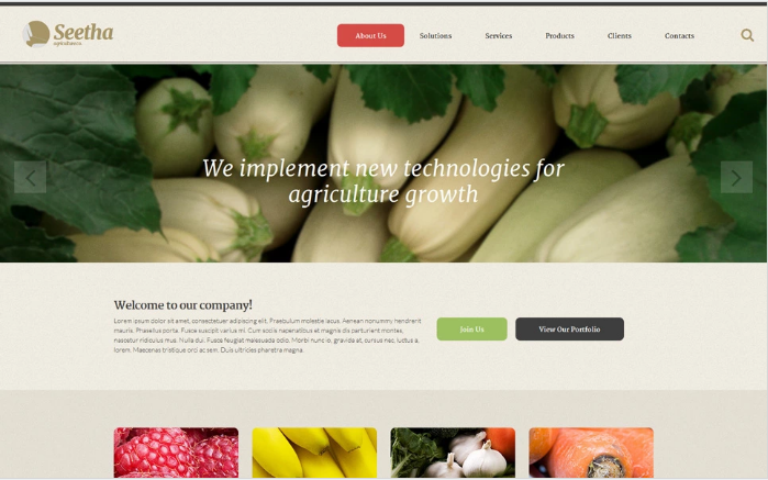 Seetha Website Template