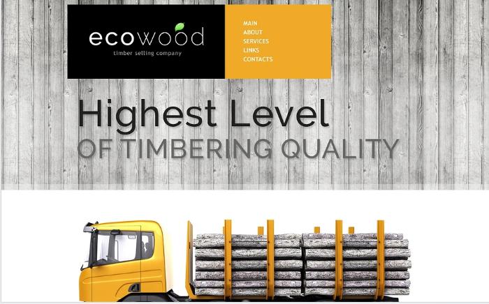 Timber Responsive Website Template