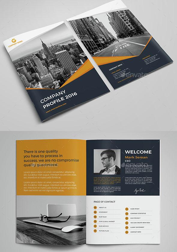 company-profile-design-templates-21